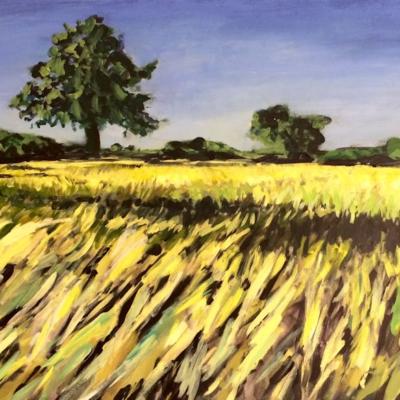 'Riebeek River Road 2'   150 x 95 cm