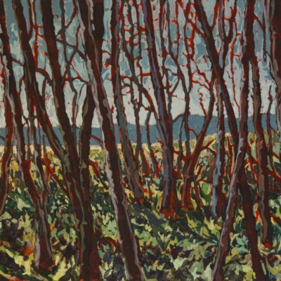Expressionist painting of Swartland woods with mountains in the background, vivid brush stokes and a colour palette of sky blues, greens, reddish browns, mustard and orange.