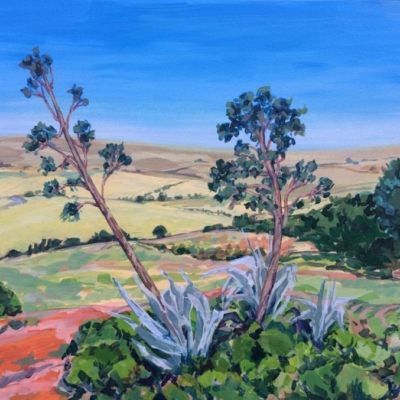Swartland valley with giant alow plants in the foreground. Colour palette of yellow, blue, orange and green.