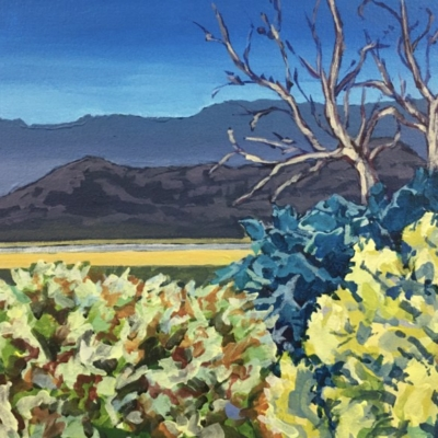Expressionist scene of tree tops, valley and Boland and Hex River Mountains looming in the background.  Vivid brush strokes with a colour palette of yellow, green, blue & grey.te