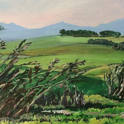 'Behind Kasteelberg'  91 x 60 cm