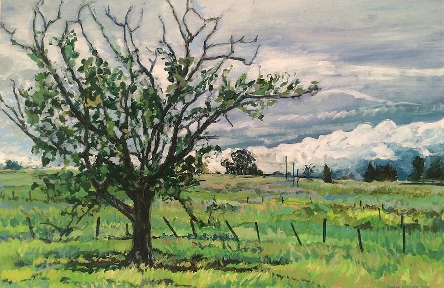 'Klapmuts farm' 95 x 63 cm